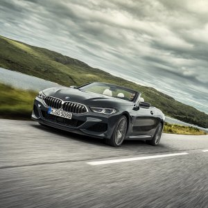 P90327622_highRes_the-new-bmw-8-series.jpg